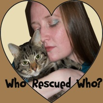 Helping Cats and Dogs Robin and Manna Who Rescued Who