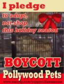 Helping Cats and Dogs Boycott Pollywood Pets Puppy Mills