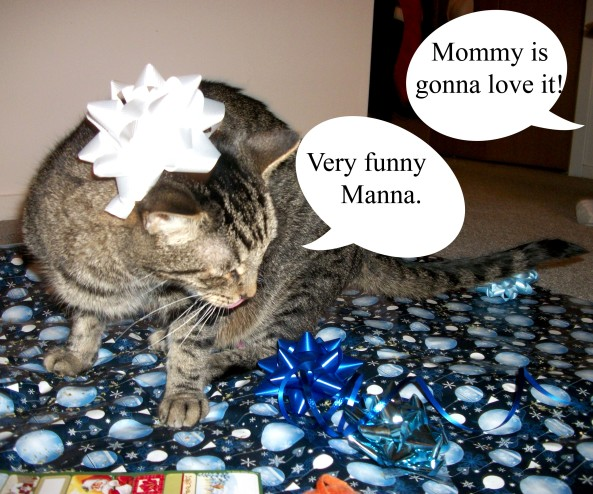 Mommy's Present 6