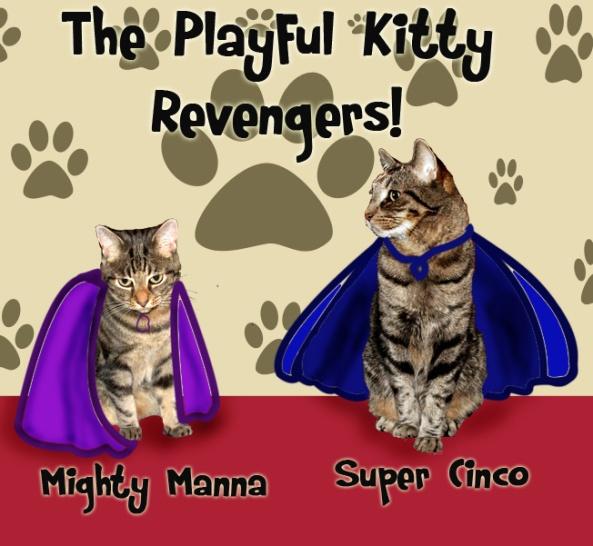 The Playful Kitty Revengers