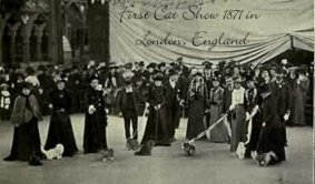 Victorian era cats - 1st Cat Show