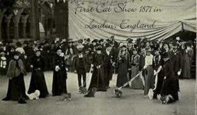 Victorian era cats - 1st Cat Show
