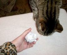 Cat Toy - Paper Ball