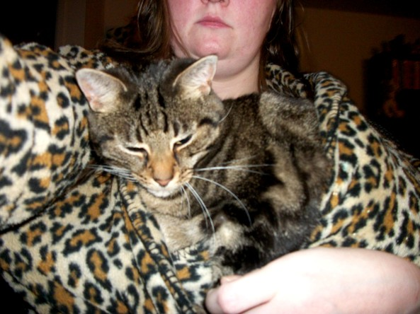 Why I love my cats -Manna in my Robe