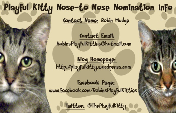 Playful Kitty Nose to Nose Nomination Info